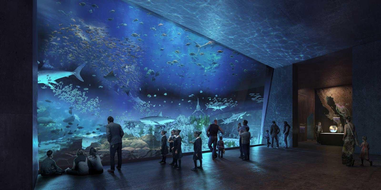 mazatlan-recomendaciones-imperdibles-cid-acuario
